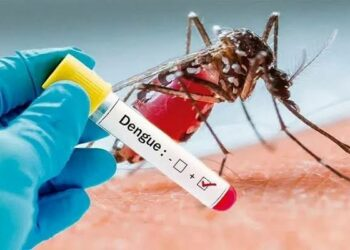 Bangladesh logs nearly 11,000 cases of Dengue Fever, 48 deaths