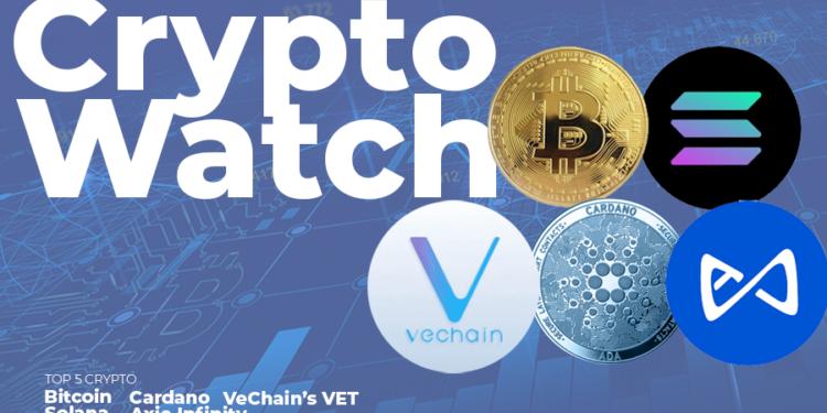 Top 5 cyptocurrencies to watch in September