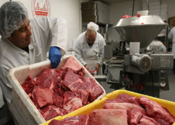Brazil suspends China beef export upon confirmation of mad cow disease cases