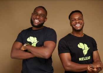 Nigerian Agritech Startup Releaf secures $4.2 million in seed funding and grants to drive industrialisation of food processing in Africa