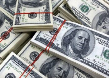 Nigeria needs over $30 billion to achieve currency stability