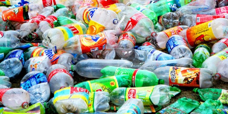 Recycling: Where some see waste others see wealth
